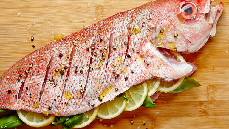 Hebrew English Fish Guide For Israel