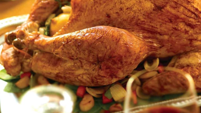16 Turkey Recipes You Will Want to Gobble Up This Thanksgiving!