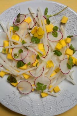 jicama radish salad
