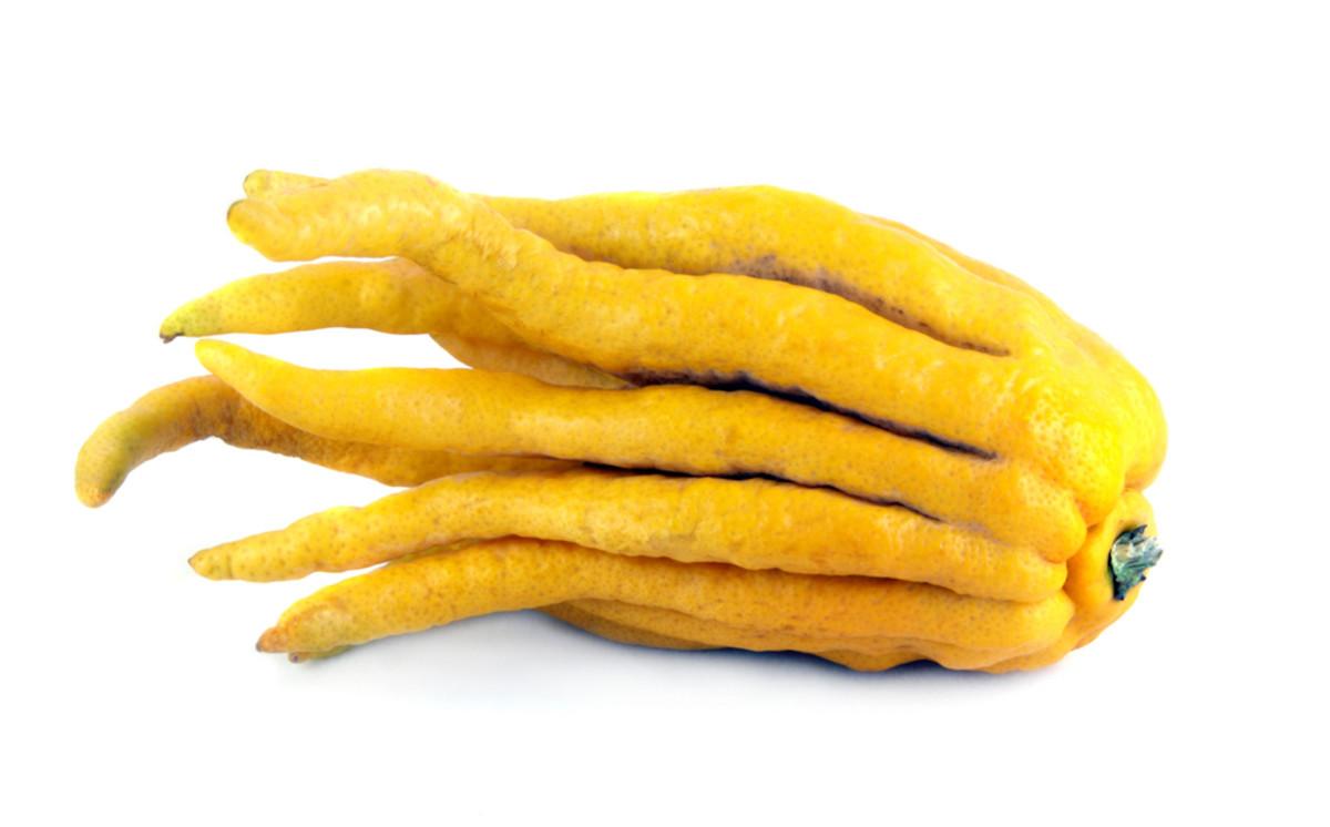 buddahs hand