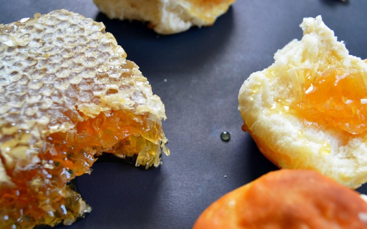 bee bread honeycomb