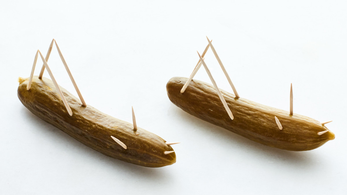 The Ten Plagues - Locusts