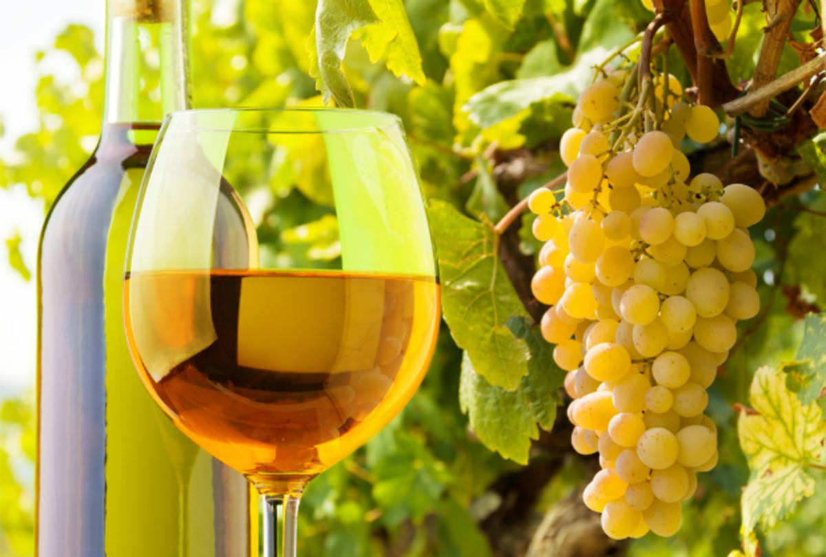kosher white wine recommendations
