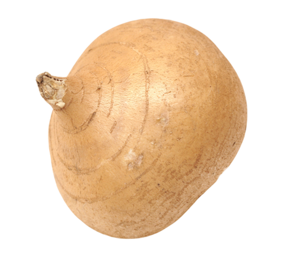 jicama season