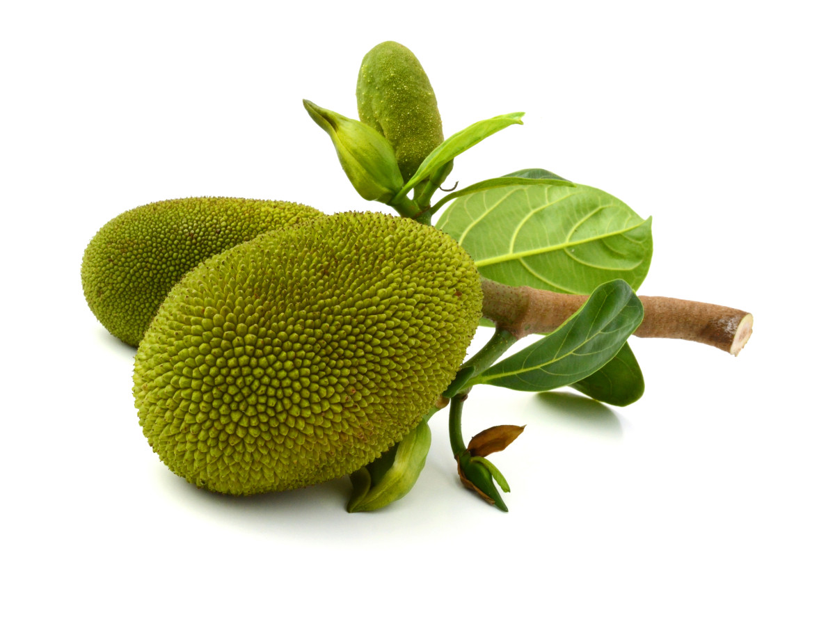 Jackfruit raw